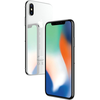 Apple iPhone X CPO 256GB (серебристый) Image #4