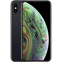 Apple iPhone XS 64GB (серый космос) Image #1