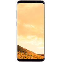 Samsung Galaxy S8+ 64GB (желтый топаз) [G955F]