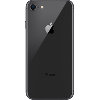 Apple iPhone 8 256GB (серый космос) Image #2