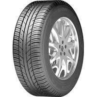 Zeetex WP1000 195/55R16 91H