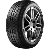 Fortuna Winter 2 205/65R15 94T