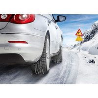Continental ContiWinterContact TS 830 P 195/65R15 91T Image #4
