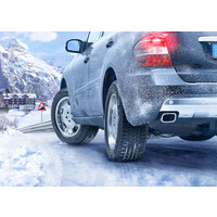 Continental ContiWinterContact TS 830 P 195/65R15 91T Image #5