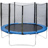 Fitness Trampoline 312 см - 10ft professional Image #1