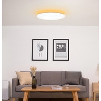 Yeelight Moon LED Smart Ceiling Light 450 XD0042W0CN Image #2