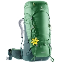 Deuter Aircontact 60+10 SL (leaf forest)