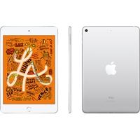 Apple iPad mini 2019 256GB MUU52 (серебристый) Image #3