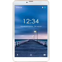 Ginzzu GT-8010 16GB LTE Gold rev.2