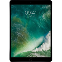 Apple iPad Pro 2017 10.5 256GB MPDY2 (серый космос)