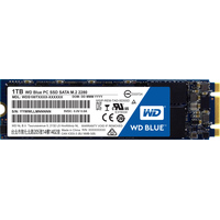 WD Blue PC 1TB [WDS100T1B0B]